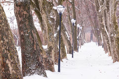 Callejón en nevoso un día Imagen de archivo