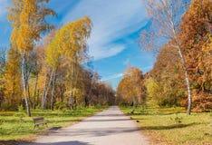 Callejón en parque del otoño Fotografía de archivo libre de regalías