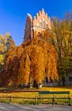 Callejón en un parque Kraków en la estación del otoño Fotografía de archivo libre de regalías