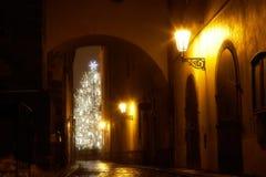 Callejón estrecho misterioso con el árbol de navidad imagen de archivo libre de regalías