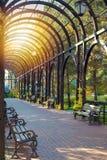 Callejón hermoso con los bancos debajo del arco de madera del jardín en parque público Diseño de la jardinería ornamental en parq fotos de archivo