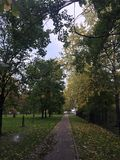 Callejón hermoso del otoño en un día nublado Fotos de archivo