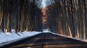 Callejón largo con nieve de Hungría Imagenes de archivo