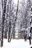 Callejón nevado a la casa señorial vieja foto de archivo libre de regalías