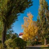 Callejón peatonal de la ciudad del otoño entre árboles hermosos altos Foto de archivo