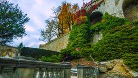 Callejón romántico hermoso en un parque con los árboles coloridos y la luz del sol fondo de la naturaleza del otoño - Bilder fotografía de archivo