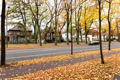 Callejón romántico hermoso en un parque, fondo natural del otoño Banco en parque del otoño foto de archivo