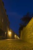 Callejón vacío en Tallinn Imágenes de archivo libres de regalías