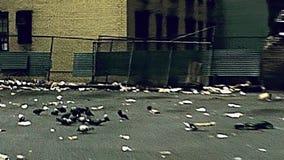 Callejón viejo de Manhattan almacen de metraje de vídeo