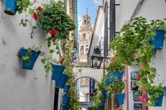Calleja de Las Flores в Cordoba, Андалусии, Испании стоковая фотография