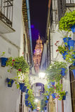 Calleja de las Flores in Cordoba, Andalusia, Spain. Royalty Free Stock Images