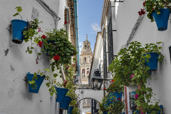 Calleja de las Flores in Cordoba, Andalusia, Spain. Stock Photography