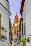 Calleja de las Flores in Cordoba, Andalusia, Spain. Stock Image