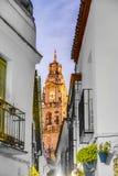 Calleja de las Flores in Cordoba, Andalusia, Spain. Royalty Free Stock Photos