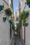 Calleja de las Flores in Cordoba, Andalusia, Spain. Calleja de las Flores, one of the most popular and tourist streets of Cordoba city near the Great Mosque in Royalty Free Stock Photo