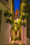 Calleja de las Flores in Cordoba, Andalusia, Spain Stock Photography