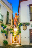Calleja de las Flores in Cordoba, Andalusia, Spain. Calleja de las Flores, one of the most popular and tourist streets of Cordoba city near the Great Mosque in Stock Images