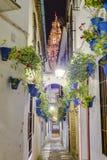 Calleja de Las Flores i Cordoba, Andalusia, Spanien Royaltyfria Bilder