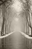 Callejón del invierno en Odessa, Ucrania. Foto de archivo