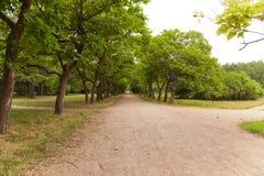 Callejones abandonados del parque en parque de la ciudad fotos de archivo