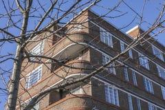 Calles de Londres, Inglaterra - un árbol y un edificio de ladrillo contra un cielo azul foto de archivo libre de regalías