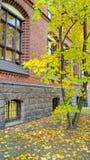 Calles de noviembre Riga foto de archivo libre de regalías