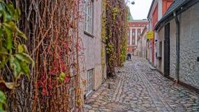 Calles de noviembre Riga imagenes de archivo