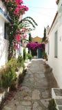 Calles estrechas de la piedra del adoquín alineadas con las flores del adelfa, Grecia fotos de archivo