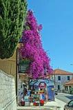 Calles estrechas de Montenegro Fotos de archivo libres de regalías
