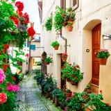 Calles florales encantadoras del pueblo medieval de Spello en Umbría Fotos de archivo libres de regalías