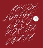 Calligraphic alphabet. Design elements Stock Photos