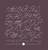 Calligraphic alphabet. Design elements Royalty Free Stock Images