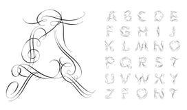 Calligraphic alphabet. Design elements Stock Images