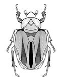 Calligraphic beetle drawing in black and white. Beetle shape decorated with graphic elements. Vector EPS10 Stock Photos