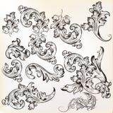 Calligraphic beståndsdelar för tappningvektordesign och sidagarnering Royaltyfri Foto