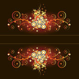 calligraphic blom- ramgrungetappning Arkivfoton