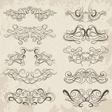 Calligraphic decorative elements. Set of design elements. Stock Images