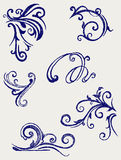 Calligraphic design element. Doodle style Stock Photo