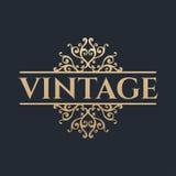 Calligraphic design element. Golden brand Stock Photos