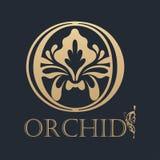 Calligraphic design element. Golden logo Royalty Free Stock Photography