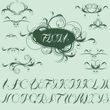 Calligraphic design elements and alphabet Stock Photo