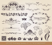 Calligraphic design elements. Stock Photography