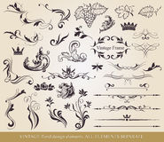 Calligraphic design elements. Royalty Free Stock Image