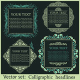 Calligraphic design elements for menu or its Stock Image