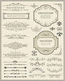 Calligraphic design elements and page decoration Royalty Free Stock Image
