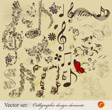 Calligraphic design elements and page decoration. Decorative elements for elegant design. Calligraphic vector Stock Photography