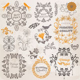 Calligraphic Design Elements and Page Decoration Stock Images