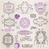 Calligraphic Design Elements and Page Decoration. Vector Set: Calligraphic Design Elements and Page Decoration, Vintage Frame collection with Flowers Royalty Free Stock Image