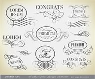 Calligraphic design elements and page decoration Royalty Free Stock Photography