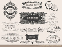 Calligraphic design elements and page decoration. This is file of EPS10 format Royalty Free Stock Photography